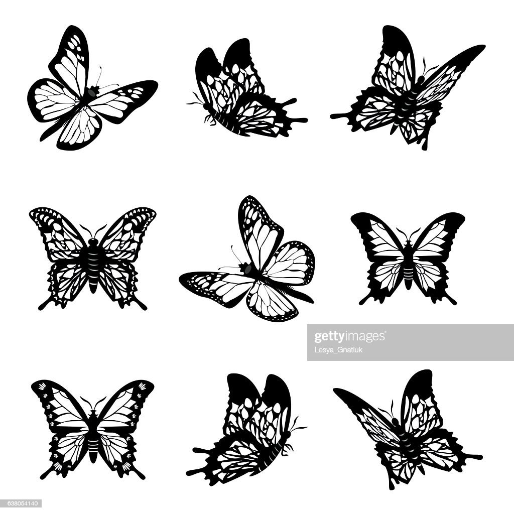 Butterfly of silhouette icon set vector illustration.