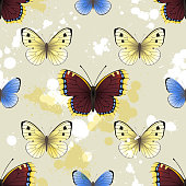 Butterfly seamless