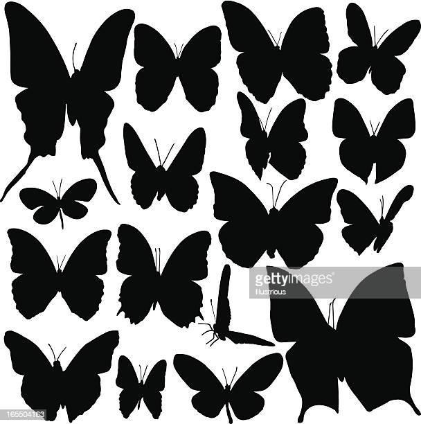 silhouette mit schmetterling - animal limb stock-grafiken, -clipart, -cartoons und -symbole