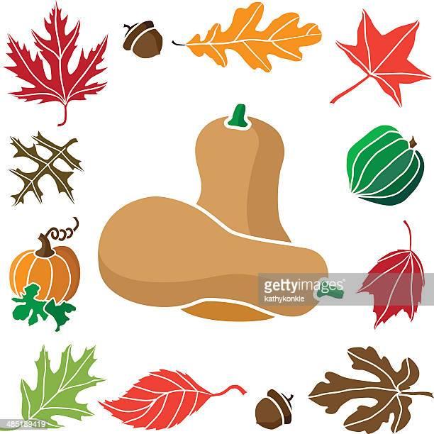 butternut squash and autumn border design elements