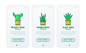 Cactus and succulents in pots thin line icons set. Modern vector illustration for mobile user interface.