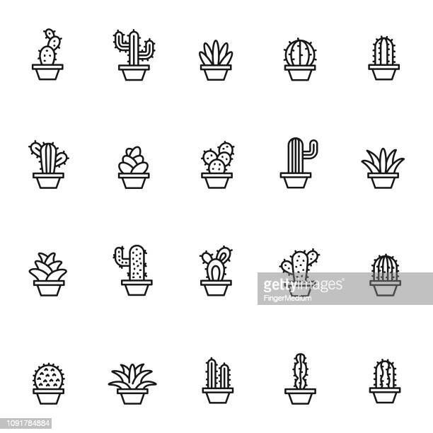 cactus icon set - cactus stock illustrations