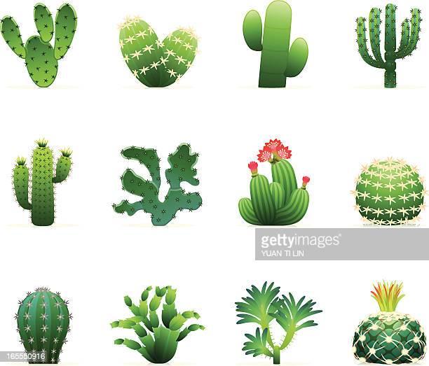 ilustraciones, imágenes clip art, dibujos animados e iconos de stock de icono de cactus - espina