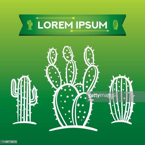 Cactus icon set - Vector Illustration