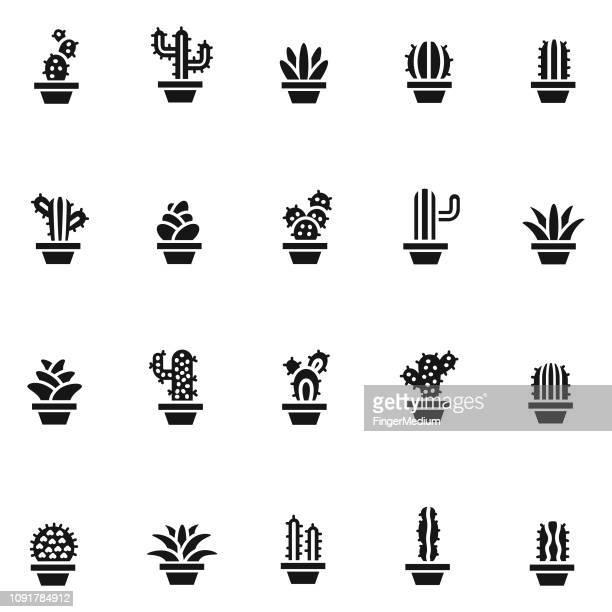 ilustraciones, imágenes clip art, dibujos animados e iconos de stock de iconos de cactus - planta carnosa