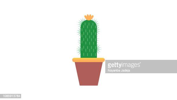 bildbanksillustrationer, clip art samt tecknat material och ikoner med cactus potten med växt-ikonen - taggig buske