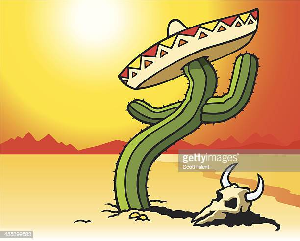 cactus - sombrero stock illustrations