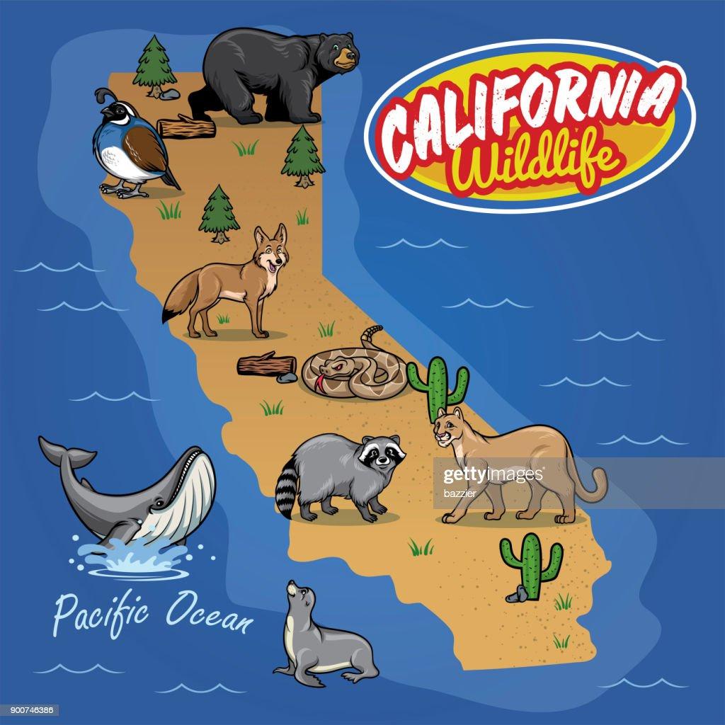 california map of animal wildlife