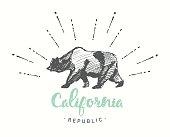 California Republic emblem drawn vector sketch
