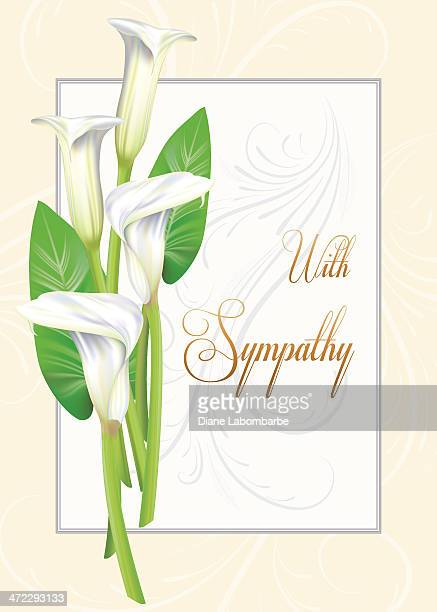 calla lily sympathy card - greeting card stock illustrations, clip art, cartoons, & icons