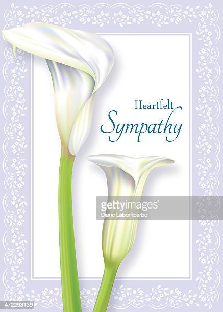 calla lily sympathy card - calla lily stock illustrations, clip art, cartoons, & icons