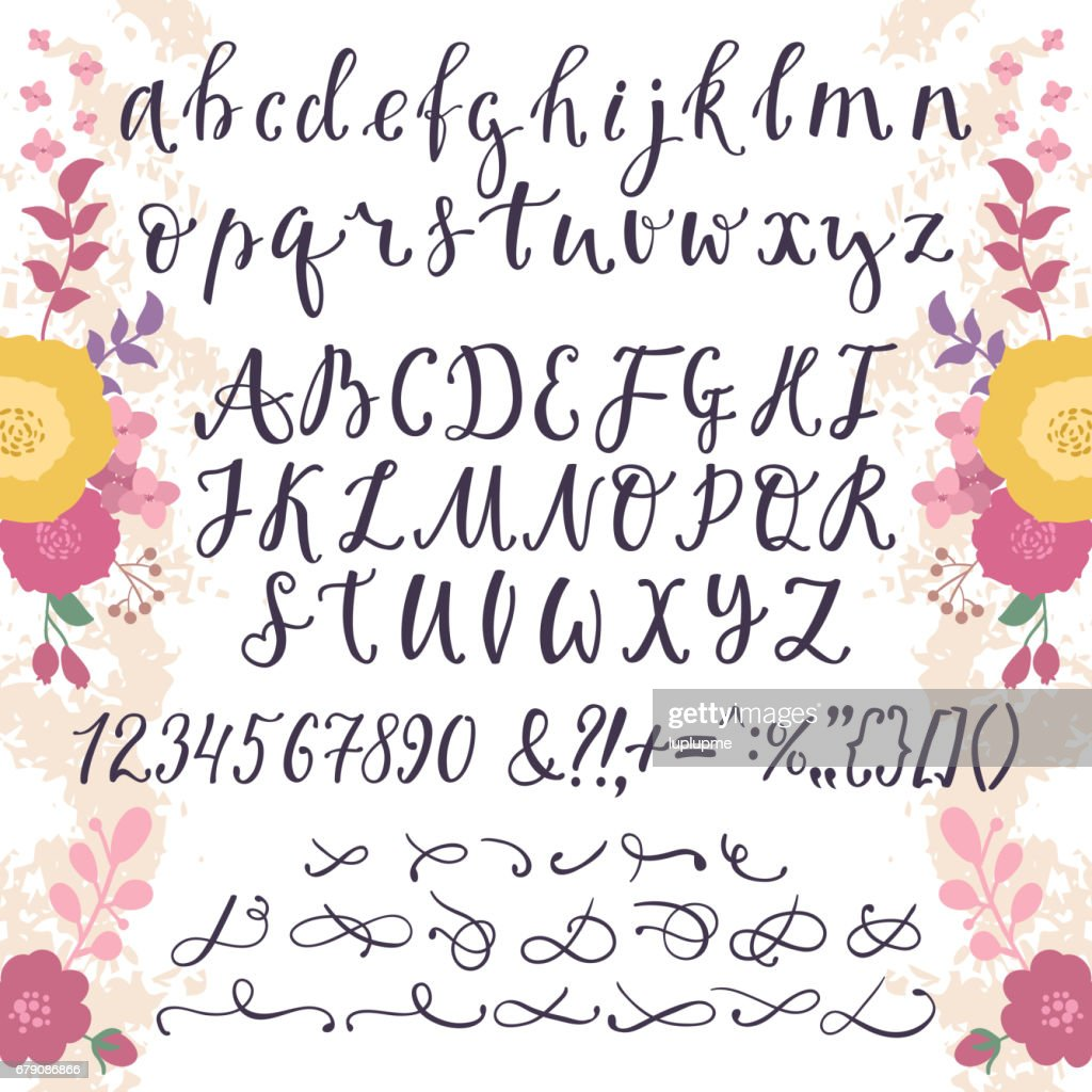 Calligraphic Vector Font With Numbers Ampersand And Symbols Flower