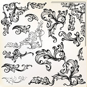 Calligraphic vector vintage design elements and swirls