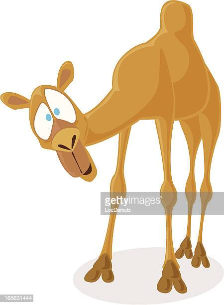 Camello de historieta