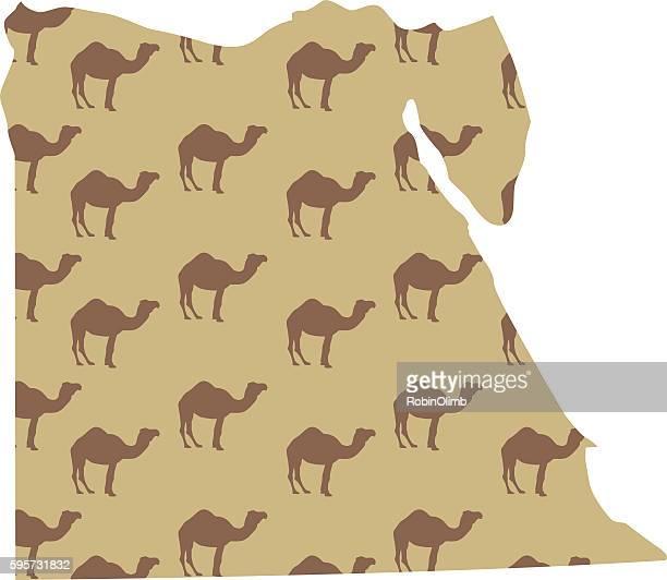 Camel Egypt Map