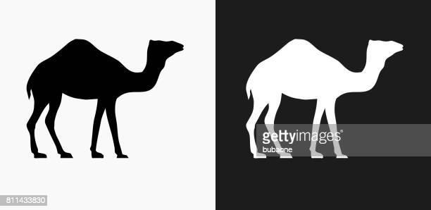 Camello icono en blanco y negro Vector fondos