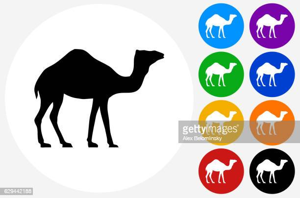 Camel Icon on Flat Color Circle Buttons