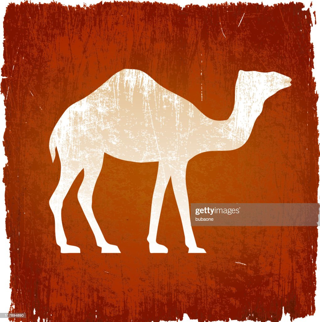 camel on royalty free vector Background