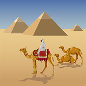 Camelcade and pyramids
