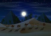 Camels Caravan in Desert at Night