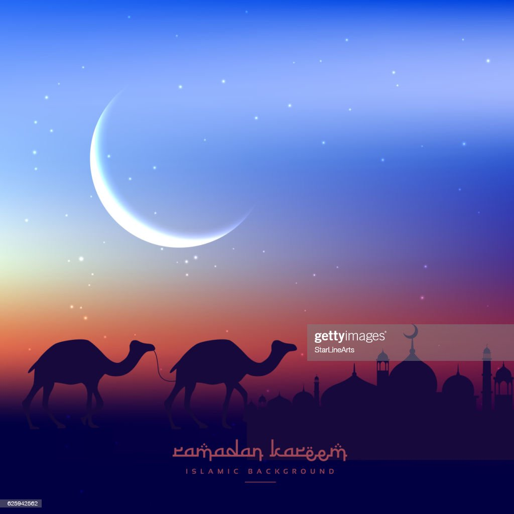 camels walking in evening with mosque