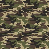 Camouflage pattern background seamless vector illustration. Clas