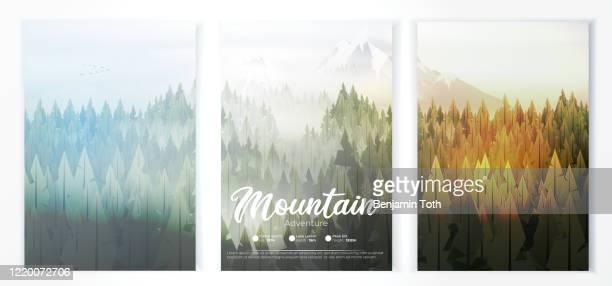camp-plakat mit pinienwald und bergen - baum stock-grafiken, -clipart, -cartoons und -symbole