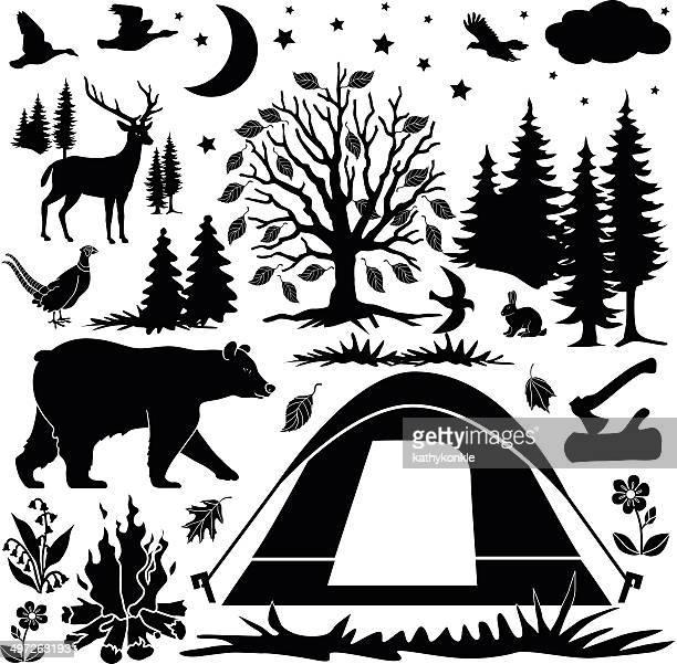 camping design elements