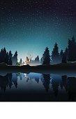 camping in pine wood near lake at night