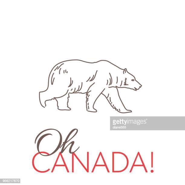 illustrations, cliparts, dessins animés et icônes de schémas de doodle canada - ours polaire