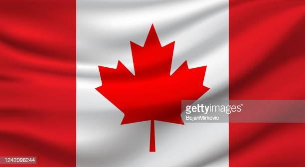 canada flag. vector - canadian flag stock illustrations