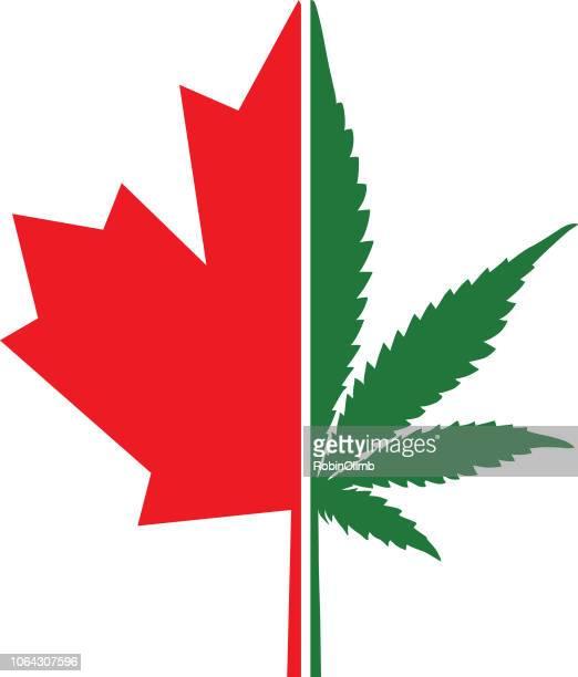 canada marijuana leaf icon - hashish stock illustrations, clip art, cartoons, & icons