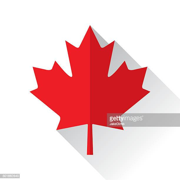 canadian maple leaf icon flat - canada day stock illustrations