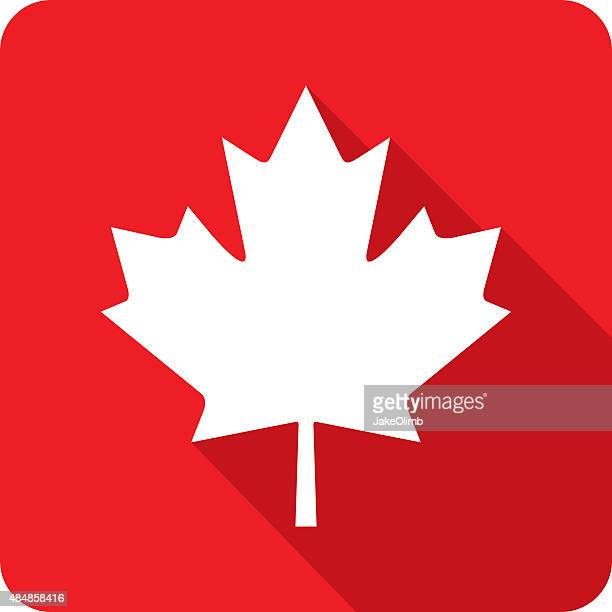 canadian maple leaf icon silhouette - canada day stock illustrations