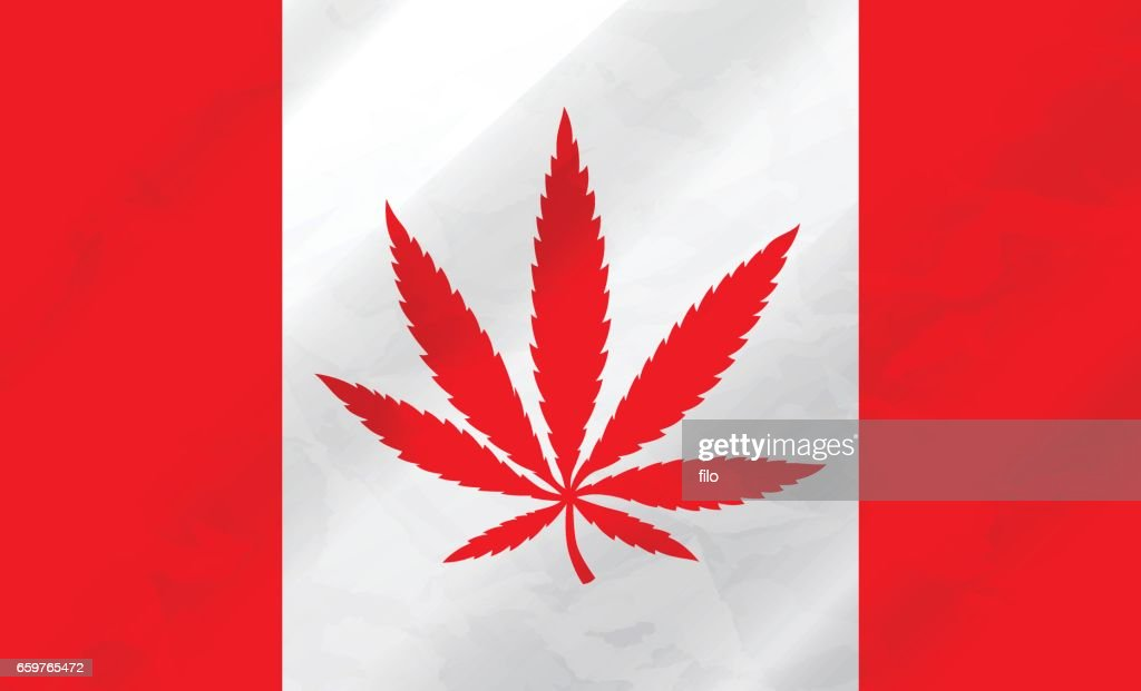 Canadian Marijuana Flag : stock illustration