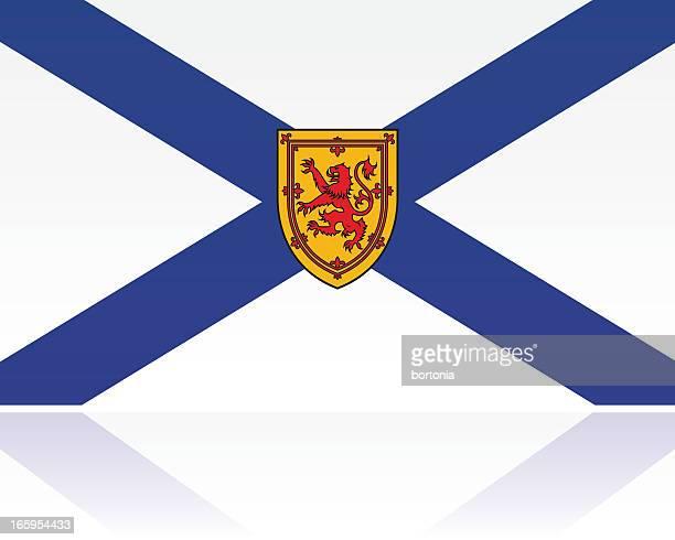 canadian provincial flag: nova scotia - flag of nova scotia stock illustrations