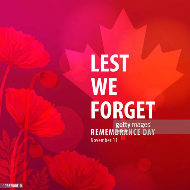 canadian remembrance day ceremonies - anzac soldier stock illustrations