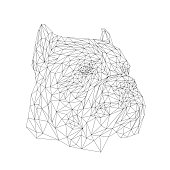 Cane Corso animal low poly design. Triangle vector illustration.
