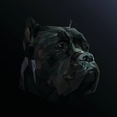 Cane Corso dog animal low poly design.