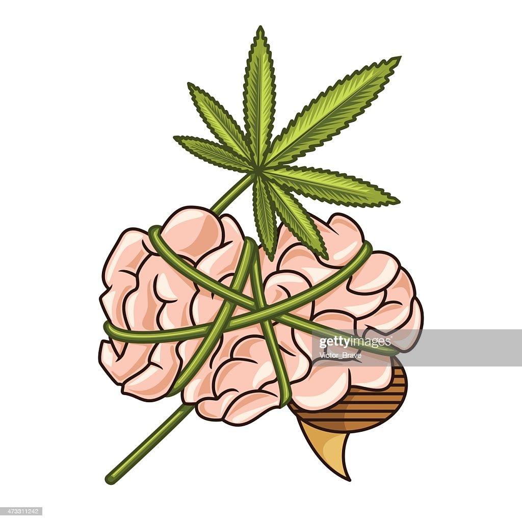 Cannabis addiction, dependence