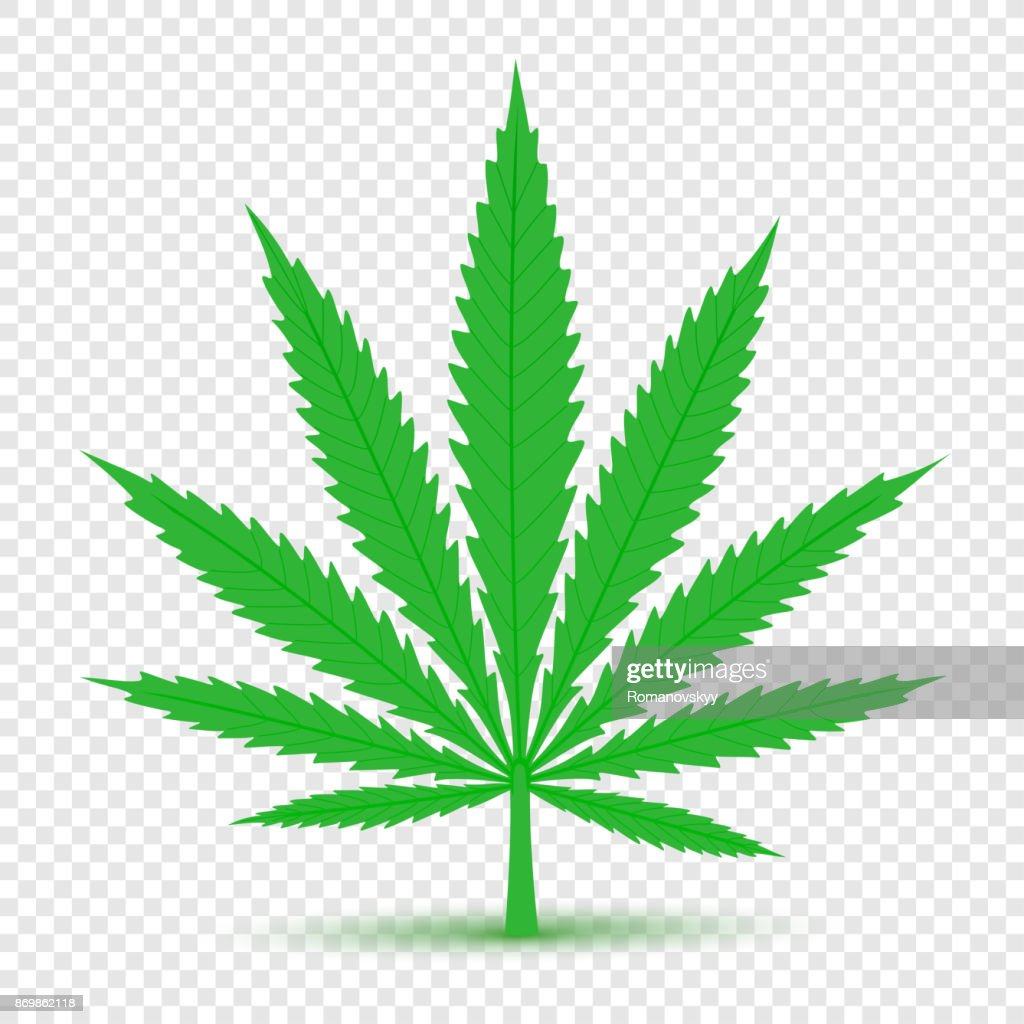 Cannabis icon transparent background