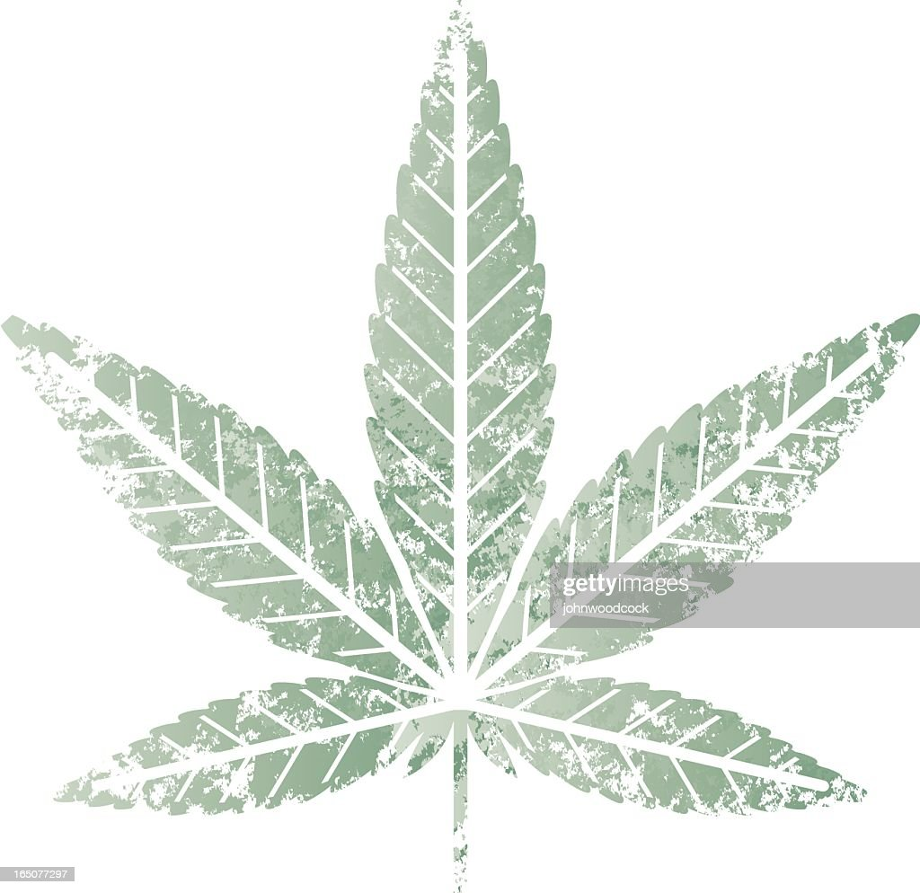 Cannabis leaf stencil : stock illustration