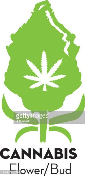 cannabis marijuana dried flower or bud icon with text - marijuana leaf text symbol stock illustrations, clip art, cartoons, & icons