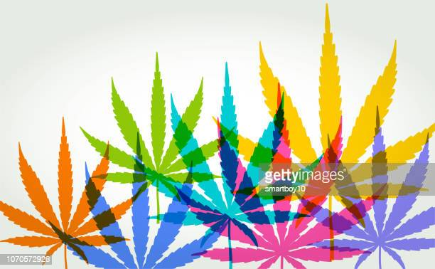 cannabis or marijuana leaves - hashish stock illustrations, clip art, cartoons, & icons