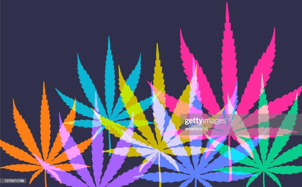 Cannabis or Marijuana Leaves : stock illustration