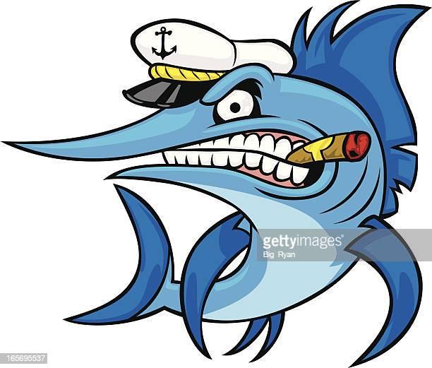 cap'n marlin - sailfish stock illustrations