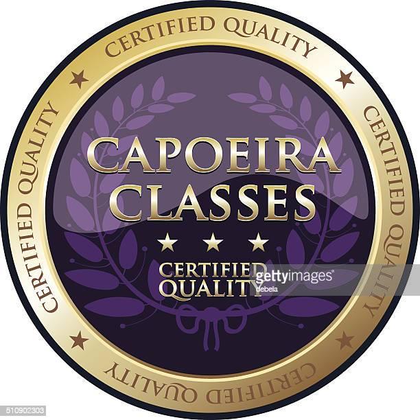 ilustrações de stock, clip art, desenhos animados e ícones de capoeira turmas - capoeira