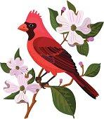 cardinal and dogwood
