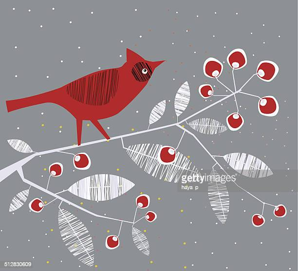 cardinal bird on branch - cardinal bird stock illustrations, clip art, cartoons, & icons