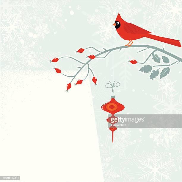 Cardinal bird with Cristmas decoration